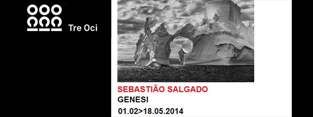 raffaella_fornasier_Salgado_imgevidenza